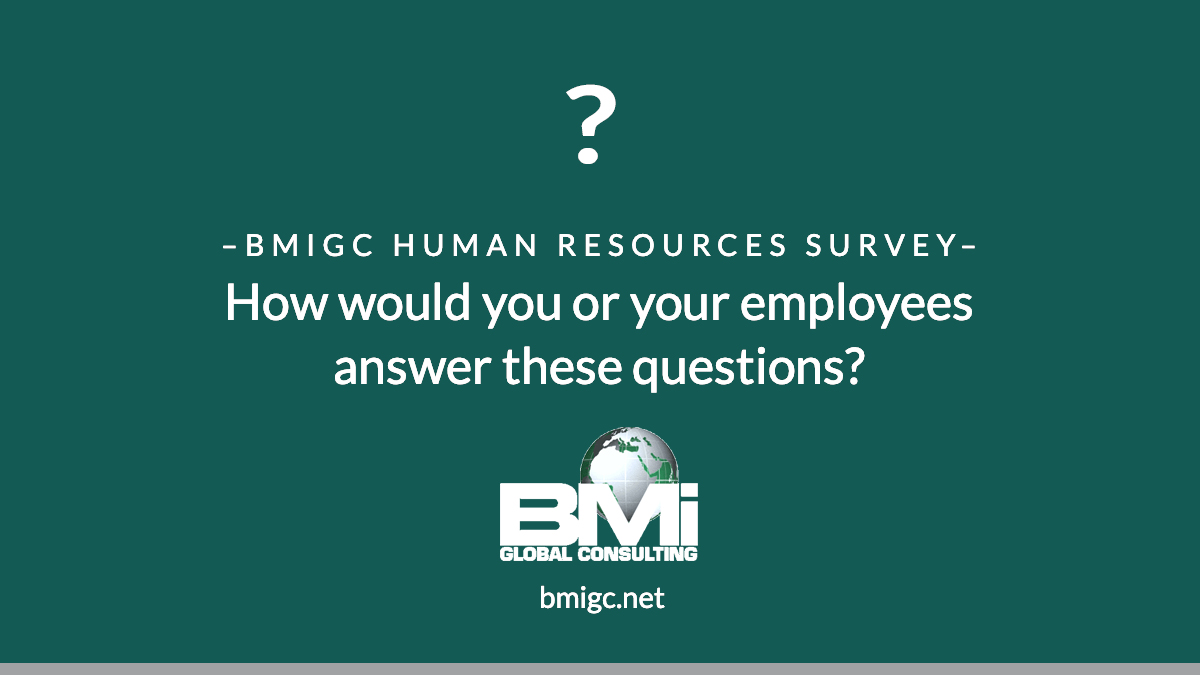 BMIGC HR Surveys
